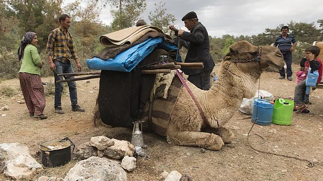 Anatolian Turkmen nomads at the state of loading the camels for the migration