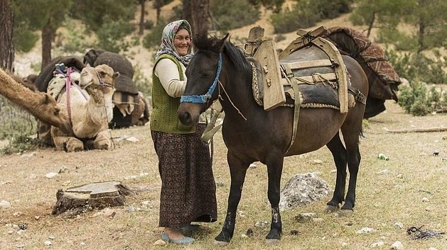 A Sarıkeçili tribeswoman holding the horse to be loaded