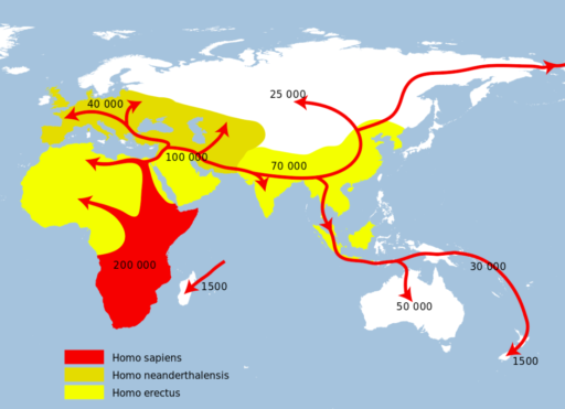 Homo Sapiens Migration Routes