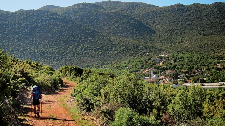 Sea coastal hills of 700-1000 meters fo altitude, covered with Mediterranean bush forests