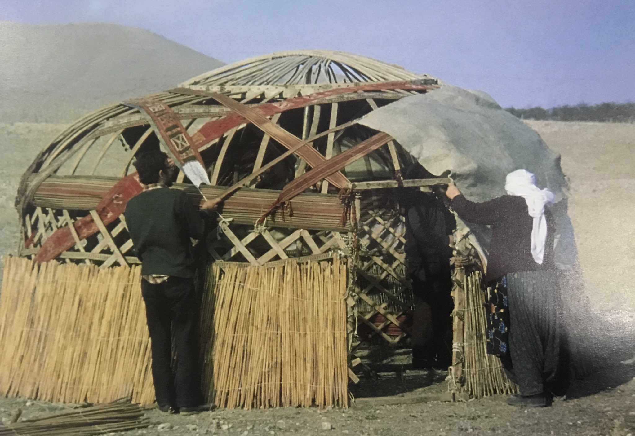 The tent frame fortified and attached with long tent bands, felt coverage of the tent put on the frame Bayat Tribe, Emirdag pasture, Afyon, West-Central Turkey, 1980s